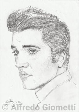 Elvis Presleyi ritratto portrait