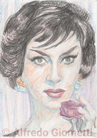 Gina Lollobrigida portrait ritratto portrait