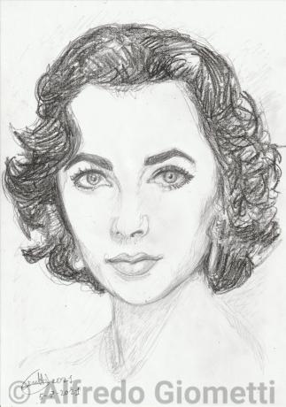 Liz Taylori ritratto portrait