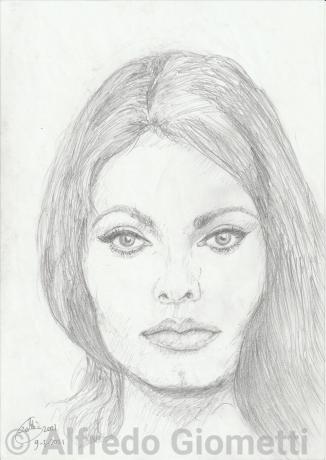 Sofia Loren ritratto  portrait